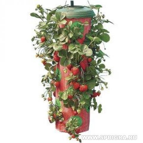 Плантатор Клубники Topsy Turvy Strawberry Planter
